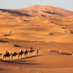 Top 10 MLM Companies In Morocco