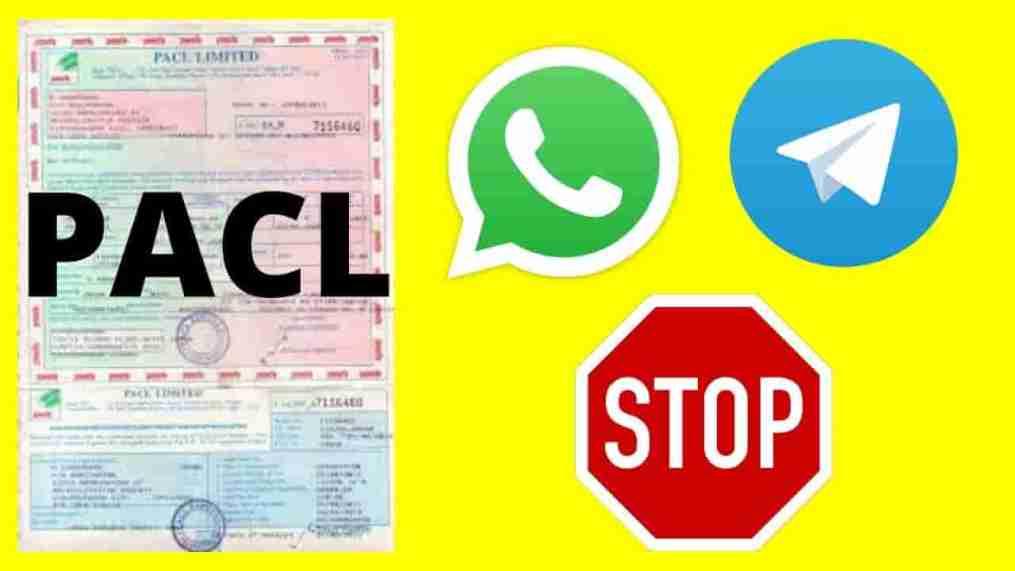 pacl whatsapp and telegram links
