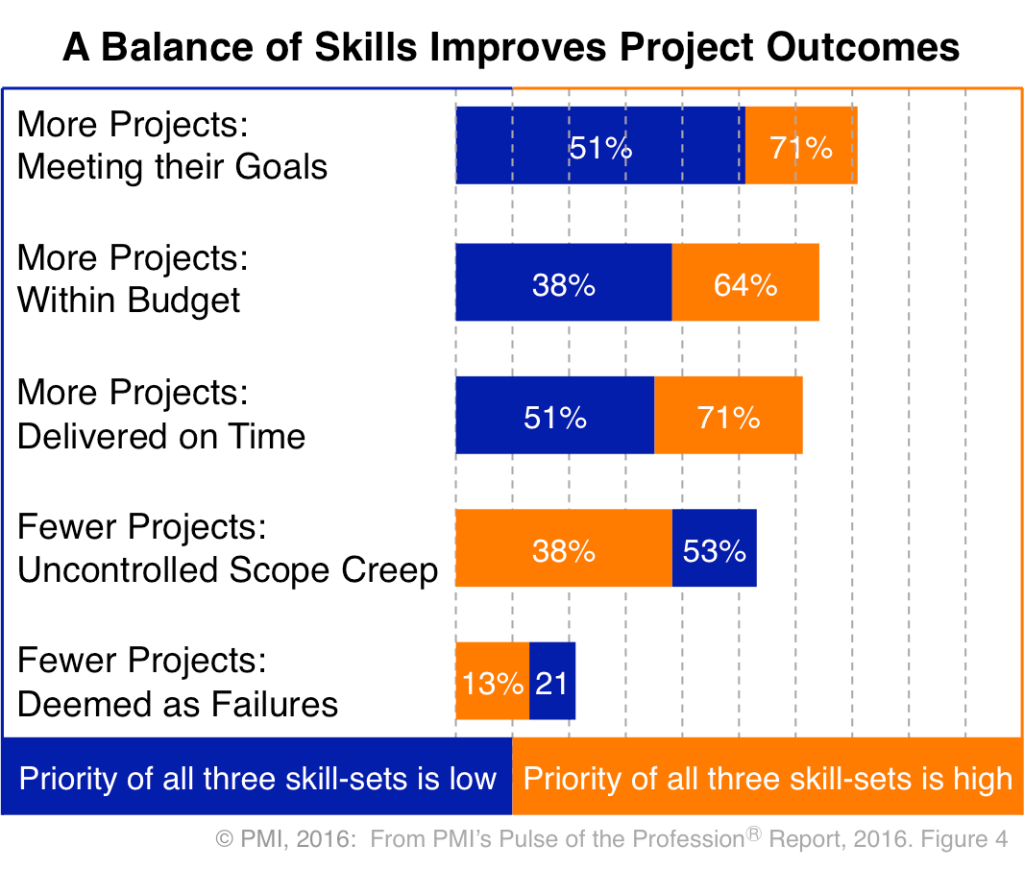 PMI Project Management - Skills Balance