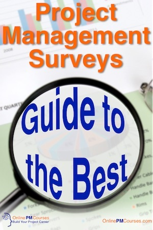Pin - Project Management Survey - A Guide to the Best