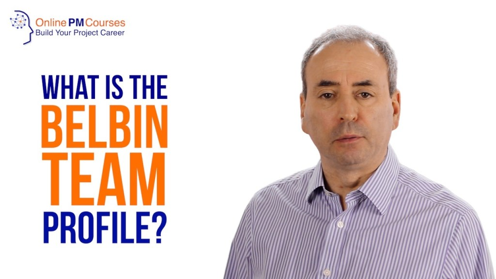 What is the Belbin Team Profile?