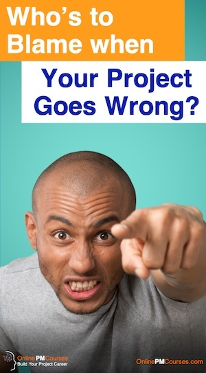 Who's to Blame when Your Project Goes Wrong?