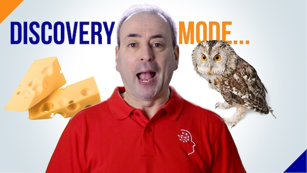 Discovery Mode - Cheese or Owl?