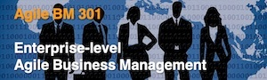 Agile BM301 - Enterprise-level Agile Business Management 300
