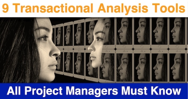 9 Transactional Analysis Tools that All Project Managers Must Know