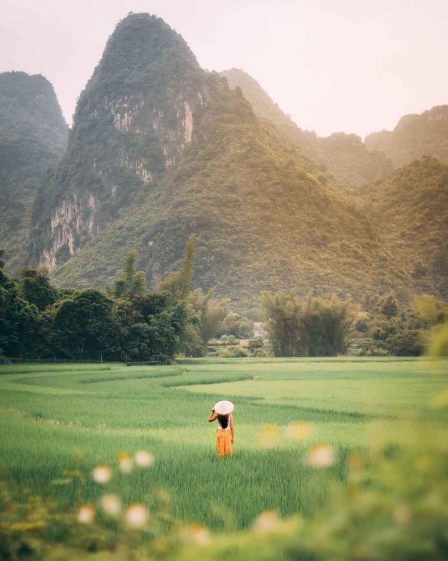 back view of a person standing on a vast green grass field