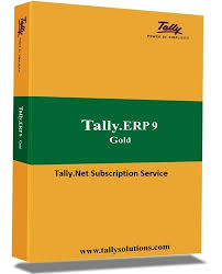 Tally Software Services - Auditor