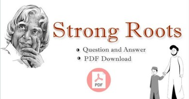 broad-questions-and-answers-of-strong-roots