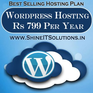 Wordpress Hosting at Rs 799 Per Year | Best Plan of Shine IT Solutions