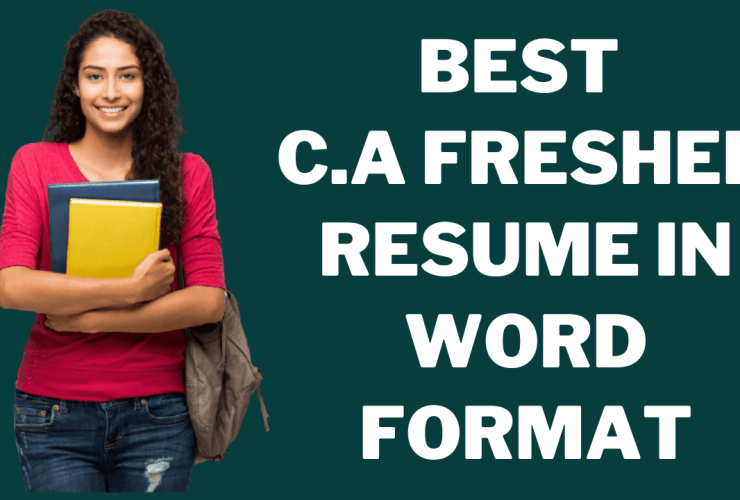 CA Fresher Resume In Word Format