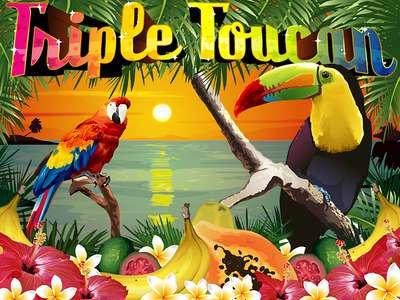 Triple Toucan