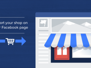 facebook winkel plugin