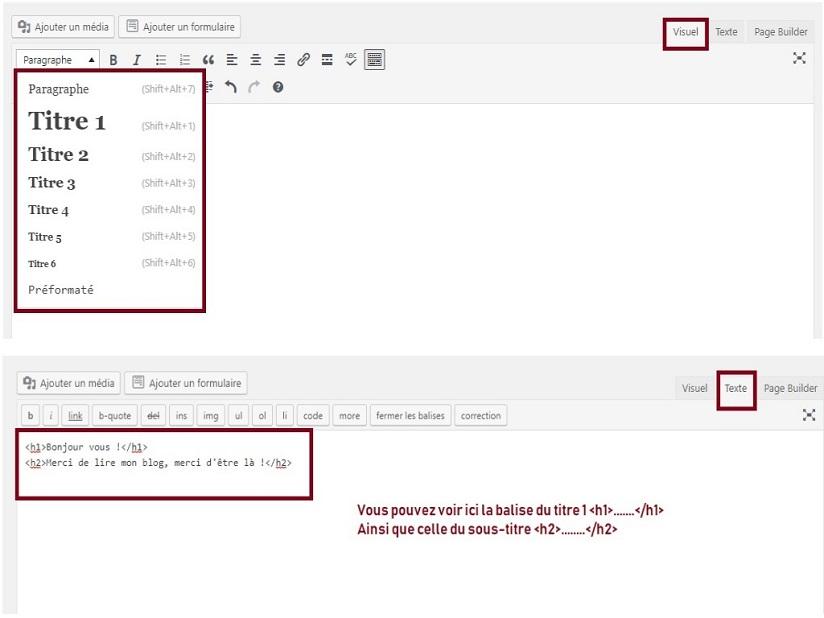 diteur wordpress balisage - Apprendre facilement le SEO avec ma méthode infaillible !