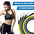 Resistance Band Set With Handle and Door Anchor (13pc) - Resistance Band - Only Fit Gear
