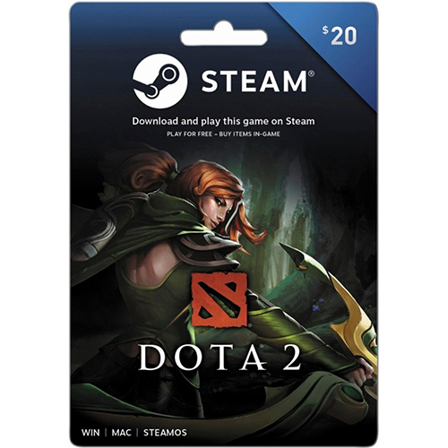 20$ Steam Gift Card (Email Delivery)