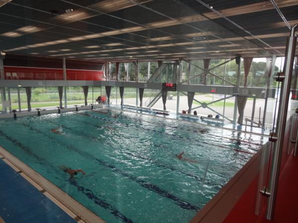 zwemmers van Het Y