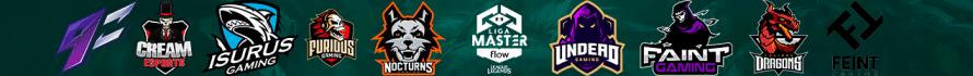 Banner Liga Master Flow 2019