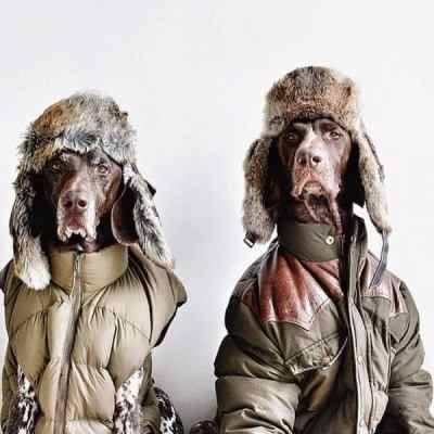 dogs style5