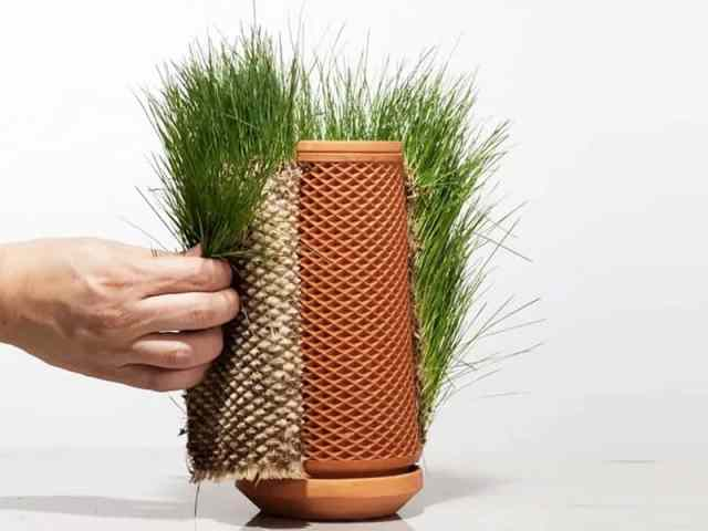Inside-Out Hydroponic Planter