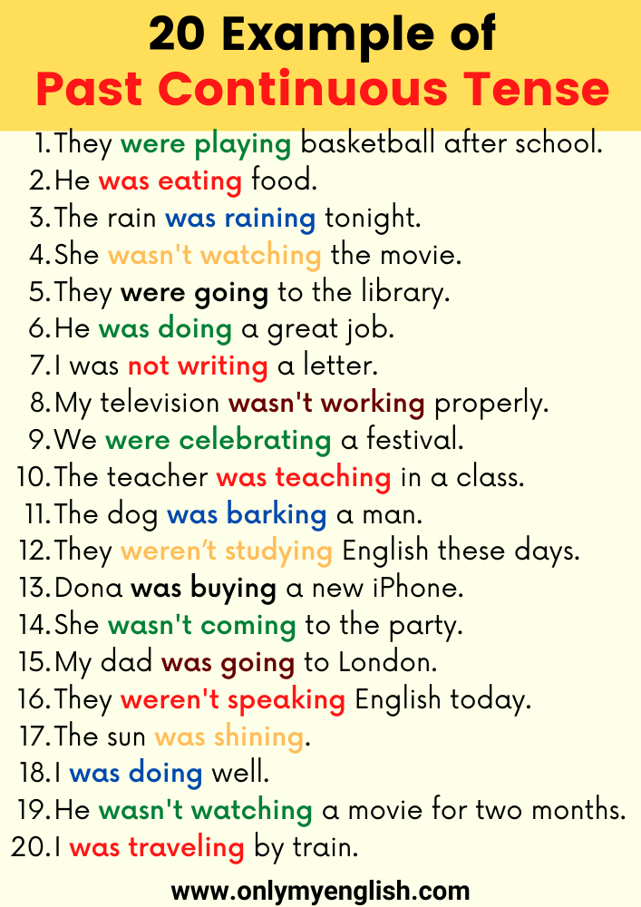 20 Sentences or Example of Past Continuous Tense