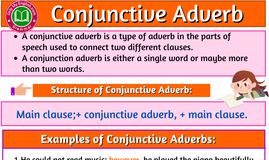 Conjunctive Adverb: Definition, Example, and List