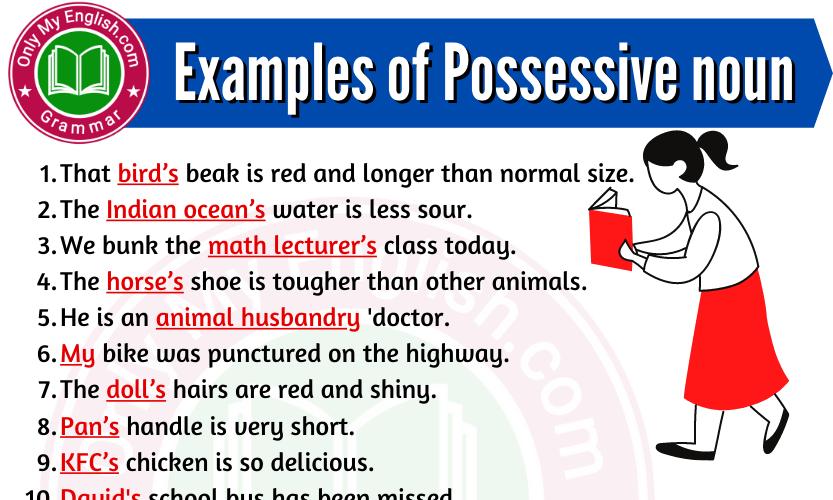 Examples of Possessive Noun are in Sentences
