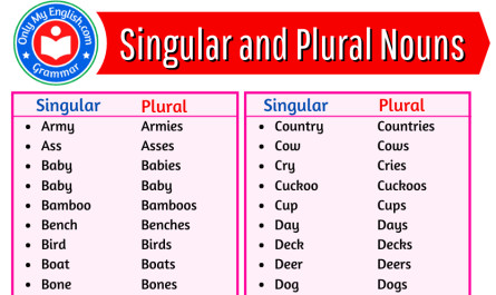 singular and plural words list
