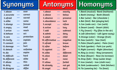 synonyms antonyms homonyms