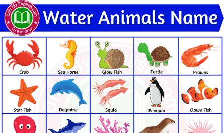 water animals name