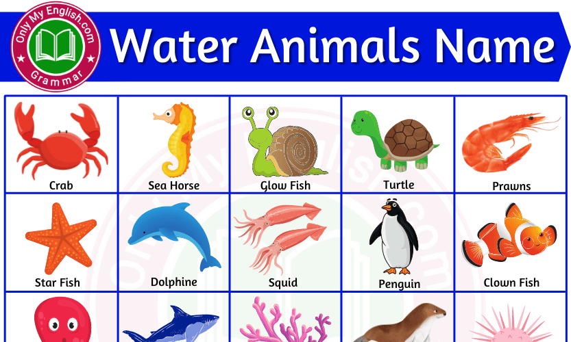 Water Animals Names: Sea, Aquatic, Ocean & Animals with Pictures List
