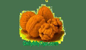 akhroot, walnut, अखरोट (Walnut)