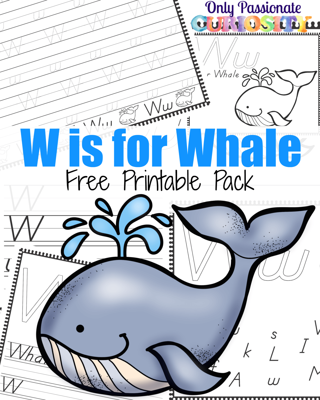 W Is For Whale Only Passionate Curiosity