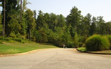 Aaronwood Alpharetta Cherokee County Subdivision Of Homes (9)