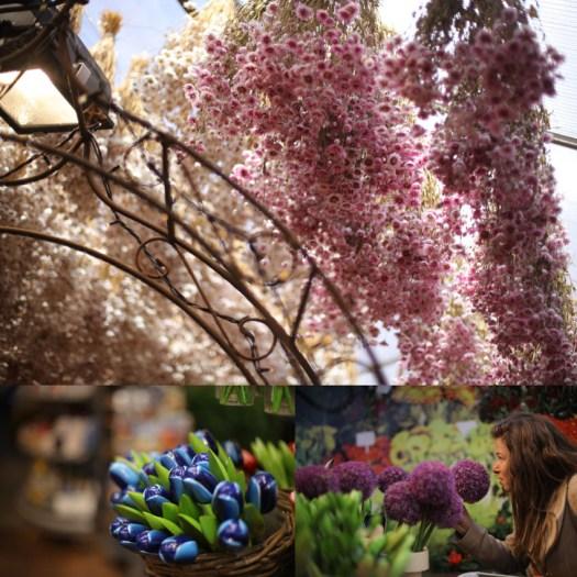 marché aux fleurs amsterdam