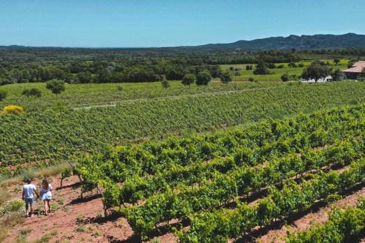 jas d'esclans la motte vins de provence
