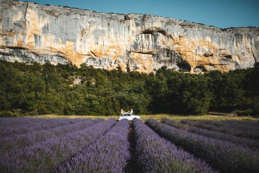 Lioux champs de Lavande blog