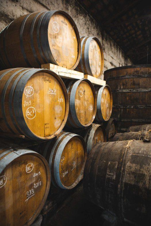 visite maison cognac