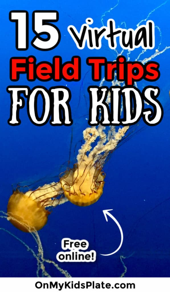 Three glowing jellyfish swim through bright blue water. A title text overlay reads 15 virtual field trips for kids.
