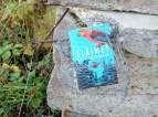 Eläimet yhteiskunnassa -kirja katiskan sisällä betonilaattojen edessä, vieressä ruohoa.