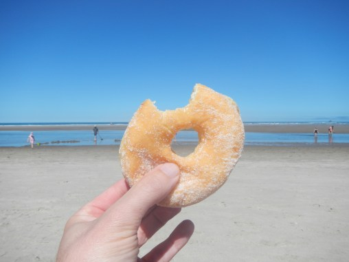 Donut and the beach