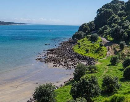 Carnet n°57 - Road Trip en NZ dans la Bay of Plenty : vers luisants, Hobbits et géothermie