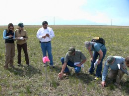 Here's a group of range scientists, wildlife biologists, and plant and soil scientists working on evaluating a site based on an Ecological Site Description.