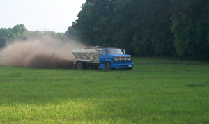 Spreading poultry manure on pasture. Picture from University of Georgia.