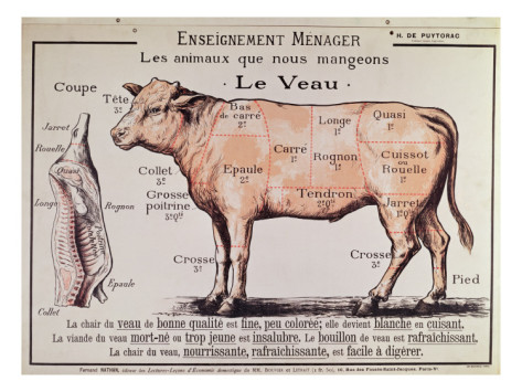 Veal part 4 calves into veal the most difficult part of the french school veal diagram ccuart Choice Image