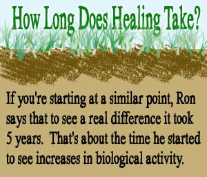 How Long Does Healing Take?