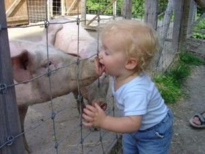 Well, we're better than kissing a pig!