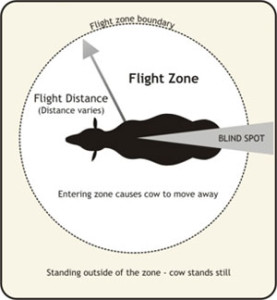 flight_zone(2)