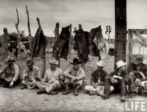 vintage-cowboy-denim-chaps
