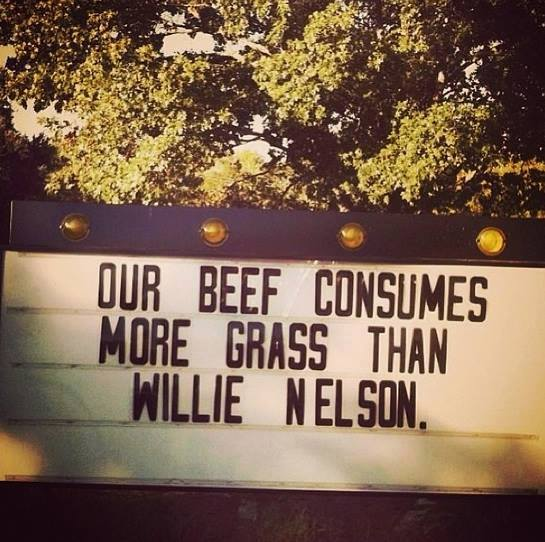 CowsVs.WillieNelson