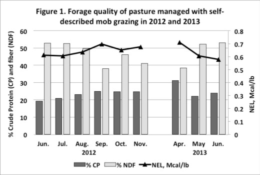 Forage Pasture Quality